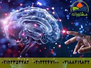 علوم شناختی