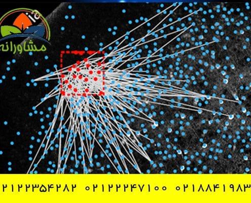 استخدامنوروتراپیست در تهران با شرایط عالی