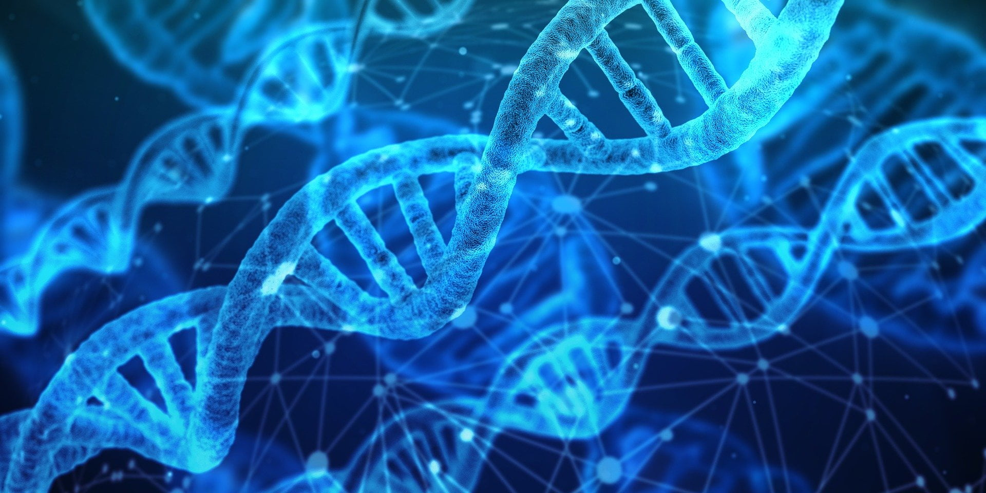 مشاوره ژنتیک genetics