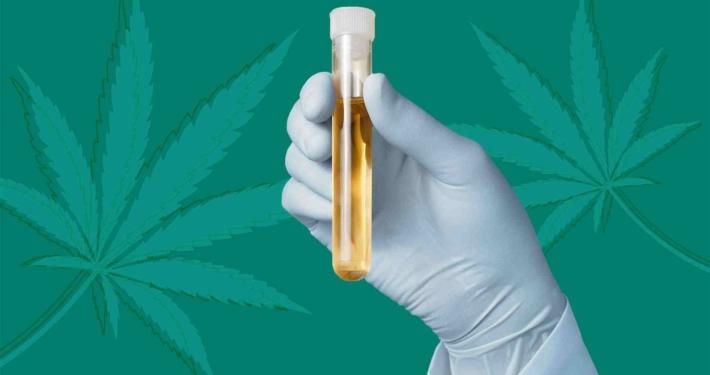 تست ماریجوانا