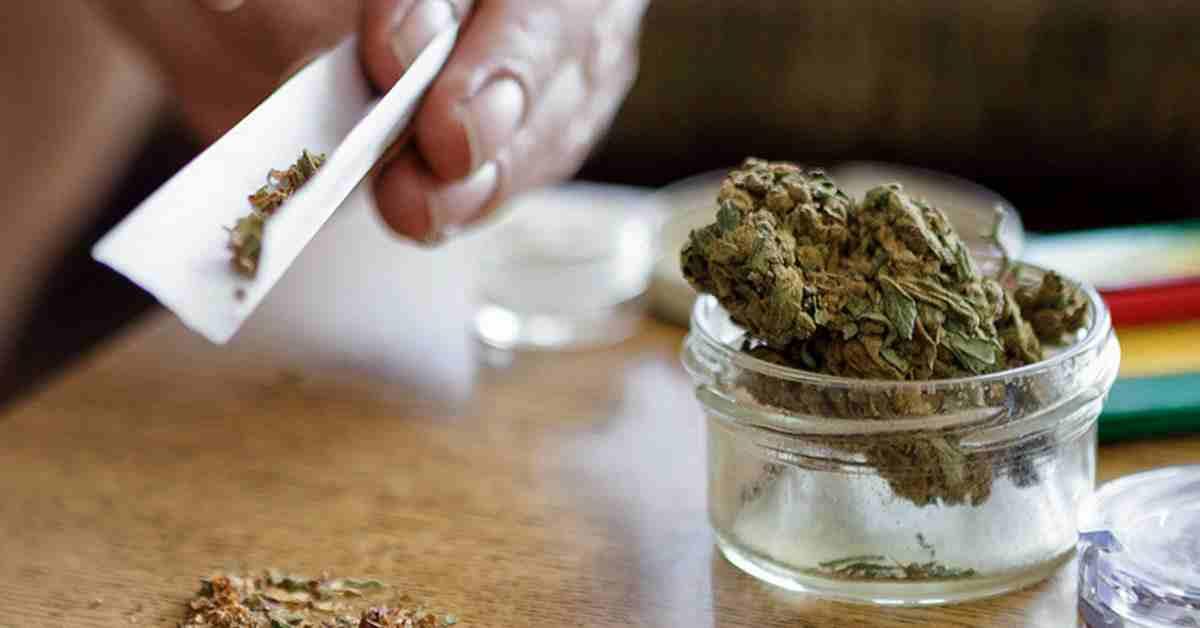 علل گرایش به ماریجوانا